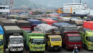 Half of Trucks in Operation Believed to Operate Illegally