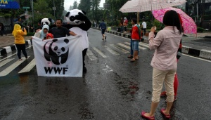 WWF Indonesia on the Govt's Arbitrary Partnership Termination