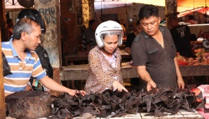 Tomohon Extreme Animal Meat Market Undeterred by Coronavirus