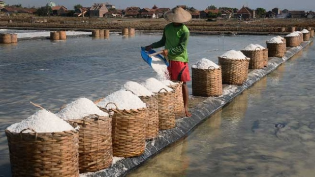 A farmer is seen harvesting salt at Kedungmalang Hamlet, Jepara, Central Java, 19 August 2017. Credit: ANTARA PHOTO
