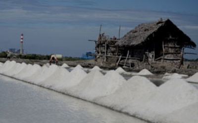 Govt: Privately Owned Salt Fields Dropping in Number