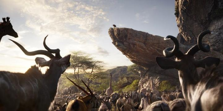 Lion King animation remake sparks debates. Credit:  screenrant