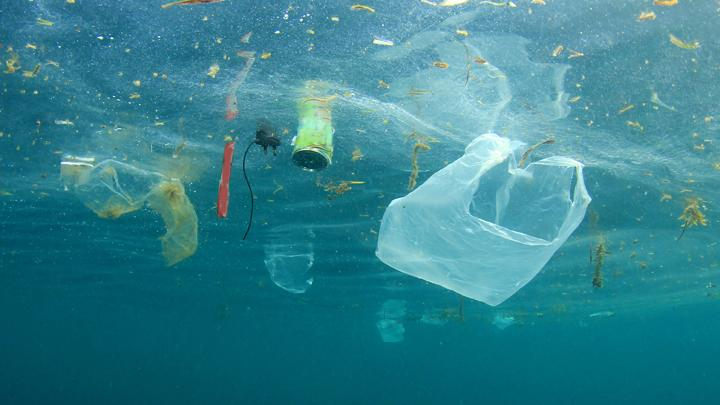 Plastic waste in the ocean. Shutterstock.com