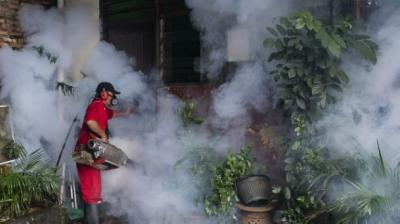 Jakarta Health Agency: 5 Districts Prone to Dengue Fever