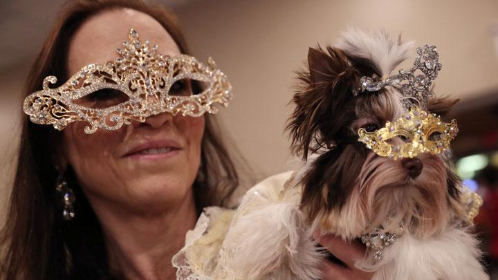 A woman holds a dog backstage at the 16th annual New York Pet fashion show in New York, U.S., February 7, 2019. REUTERS/Shannon Stapleton