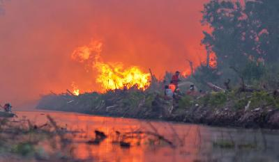 11 Hotspots of Forest Fires Detected in Riau's Coastal Areas