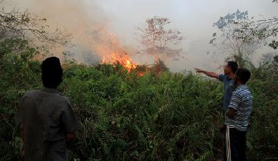 Forest Fire Haze Reaches Aceh, Says BMKG