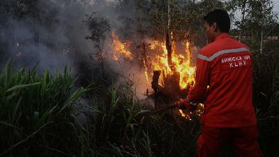 Walhi: Hotspots in Kalimantan and Sumatra Worsen