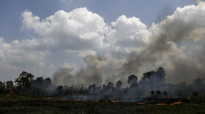 Director Named Suspect in South Sumatra Forest Fire
