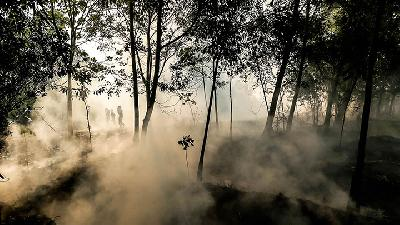 7 Facts about Haze Smothering Indonesia, Malaysia, Singapore