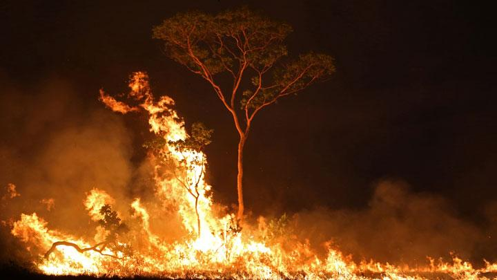 Raging Wildfires Fought Night and Day in Amazon