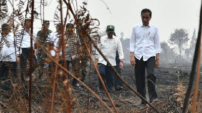 President Warns About Future Forest Fires, Calls For Better Prevention
