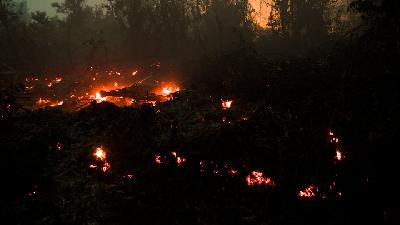 Forest Fire Continues to Rage in Riau