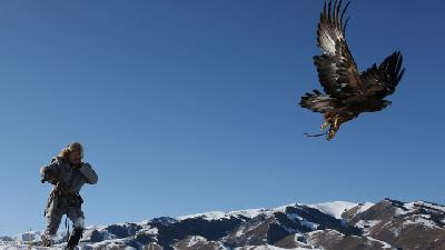 Kazakhstan Falconers Take Part in Traditional Hunting Contest