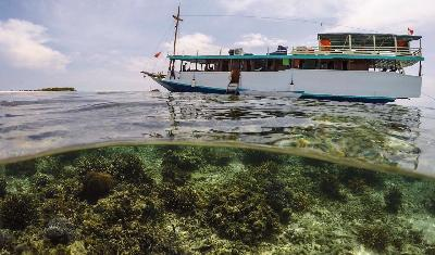 Labuan Bajo, Komodo Island Starting to Collect Tour Bookings, says ASITA