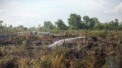 Police, Military Chiefs Unable to Contain Forest Fires Will Be Replaced: Jokowi