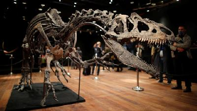 Dinosaur Skeleton Fetches Three Million Euros